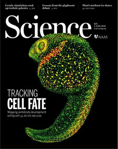 科学(Science)2018年6月1日